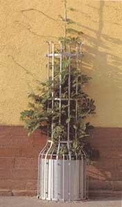 Kletterpflanzenschutzgitter